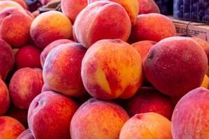 Saftig-reife orange-rote Pfirsiche gestapelt in Verkaufsauslage eines Früchteverkäufers