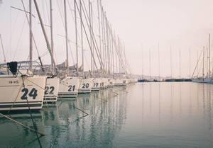 Sailboats waiting for season