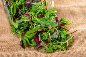 Salad mix and arugula on a background of burlap (Flip 2019)