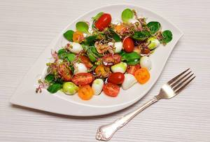 Salat: Mozarella und Tomaten