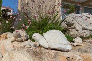 Schildkröten aus Stein im Garten eines Hotels in Afitos