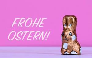 Schokoladen-Osterhase neben Text Frohe Ostern mit rosa Hintergrund
