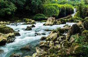 Schöner Fluss mit vielen Felsen, Bäumen und Moos mit Langzeitbelichtung fotografiert
