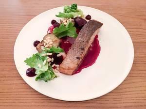 Schottischer Label Rouge Lachs mit Rote Beete, Topinambur und Endivie