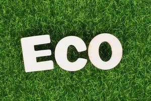 Schriftzug ECO (ökologisch) aus weißen Holzbuchstaben auf grüner Wiese