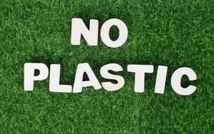 Schriftzug NO PLASTIC (kein Plastik) aus weißen Buchstaben aus Holz auf grüner Wiese