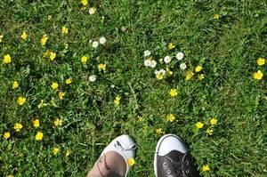 Schuhe auf Wiese