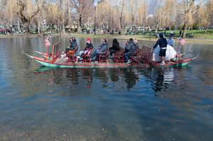 Schwan-Boot im Public Garden in Boston, USA