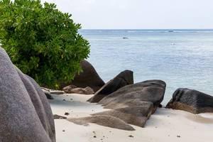 Schwarze Granitbrocken auf dem weißem Sandstrand Anse Source d