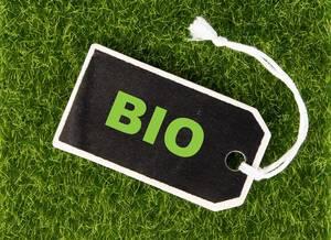 Schwarzes Preisschild mit grüner Aufschrift BIO auf leuchtend grüner Wiese