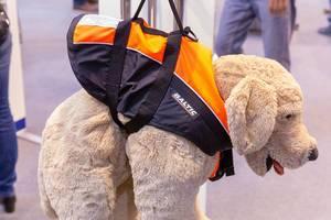 Schwimmweste für Hunde verhindert Ertrinken bei Bootsfahrten – demonstriert an Stoffhund
