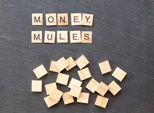 Scrabble Stones Money Mules