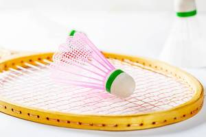 Shuttlecock located on a badminton racket.