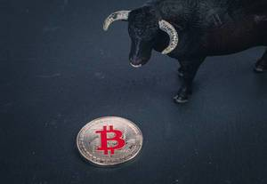 Silver Bitcoin with black bull