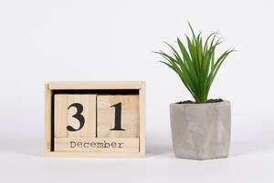 Silvestertag 31. Dezember auf Holzkalender mit grüner Pflanze in Steintopf