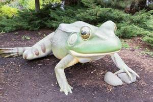 Skulptur eines grünen Frosches - Shedd Aquarium, Chicago