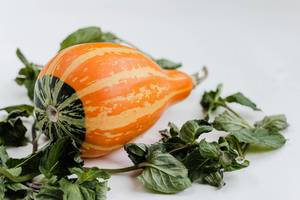 Small decorative pumpkin