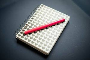Small notebook with pink pen on top