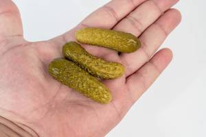 Small Pickles in the hand above white background