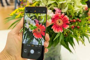 Smartphone camera test with Huawei P30 Pro: mobile phone photo and direct color comparison of a colorful bouquet of flowers