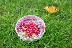 Smoothie-Bowl mit Cranberries und Goji-Beeren