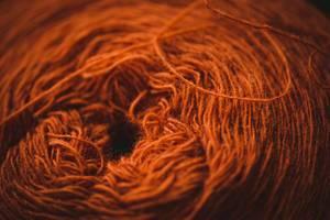 Soft Messy Orange Yarn (Flip 2019)