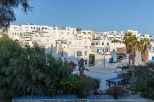 Sonnenschein über weißen Kalksteinhäusern und Wohnhäusern, neben Palmen, auf der Insel Paros in Griechenland