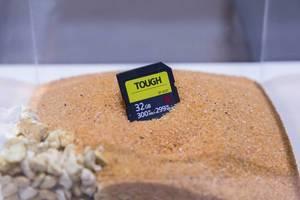 Sony Tough SD Speicherkarte verbuddelt im Sand an der Photokina in Köln