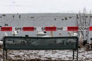 Sperrzone: Betreten der Eisfläche verboten