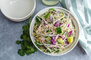 Sprout Asian Salad with Cucumber and fresh herb  (Flip 2019)