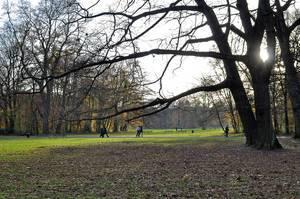 Stadtwald Köln