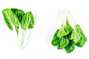 Stalks of fresh green bok choy on white background