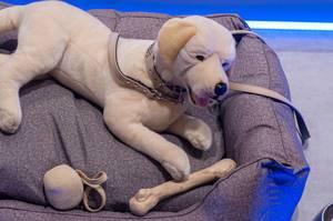 Stoffhund mit Leine, Beißkorb, Knochen