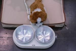 Stoffhund mit Leine sitzt in Hundebett vor Tablett mit Futter- und Wassernapf