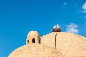 Storks on the dome of Toki Zargaron building, ancient trading domes in Bukhara, Uzbekistan (Flip 2019)
