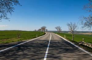 Straße führt durch Agrarland, mit Bäumen am Straßenrand, führt durch Südmähren