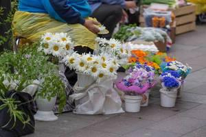 Straßenverkäuferin in Russland verkauft Blumen