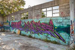 Street art, graffiti on the wall of abandoned ruin