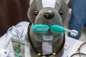 Stuffed animal with an Emmi Pet ultrasonic toothbrush for cleaning pets