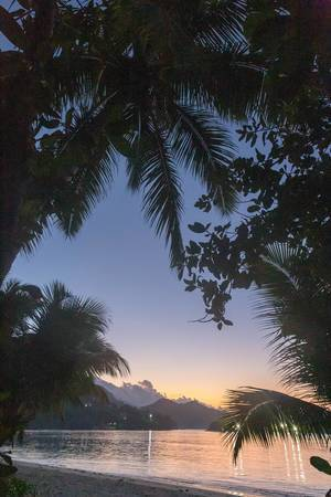 Sunset with palm trees, mountains and the Indian Ocean on La Digue, Seychelles