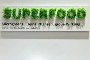 Superfood - Schriftzug mit Microgreens