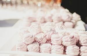 Sweet Little Pink Zephyrs