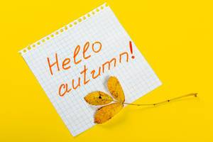 Tag-with-the-words-Hello-Autumn-and-a-colorful-autumn-leaf-on-yellow-background.jpg