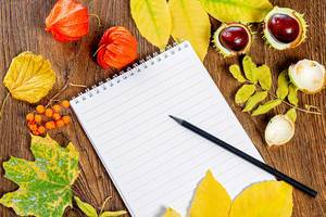 The concept of autumn mood, a letter to your loved ones. Notepad and pencil, yellow leaves, chestnuts and berries