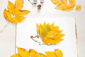 The hedgehog is made of autumn yellow leaves with foliage and paints on a white wooden table
