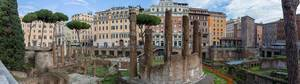The ruins of Largo di Torre Argentina in the Town center of Rome