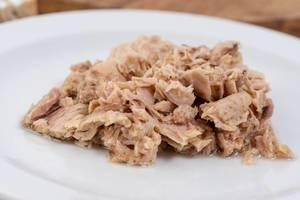 Thunfisch aus der Konserve, auf einem weißen Teller