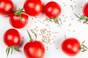Tomato seeds and fresh tomatoes on a white background