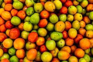 Top shot of fresh tomatoes (Flip 2019)