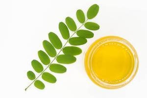 Top view of a jar of acacia honey with green branch